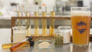 Вчені створили пиво з корисними кишковими бактеріями