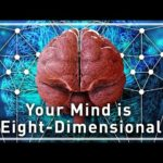 З'єднання між нейронами нашого мозку існують у восьми вимірах