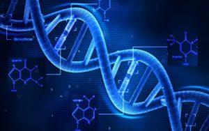 Microsoft записала в ДНК пісню Deep Purple