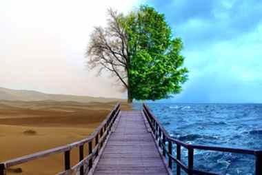 ООН: світу загрожують серйозні наслідки зміни клімату