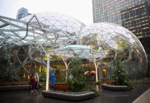 Компанія Amazon відкрила райський офіс