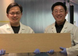 Вчені розробили «супер-деревину з міцністю сталі