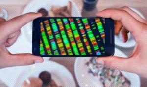 Детальне дослідження показало — дієти на основі ДНК не працюють