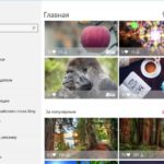 Wallpaper Studio 10 — додаток для пошуку, встановлення та скачування Full HD шпалер для Windows 10