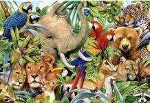Міжнародний проект БіоГеном створить генетичну бібліотеку всіх тварин планети